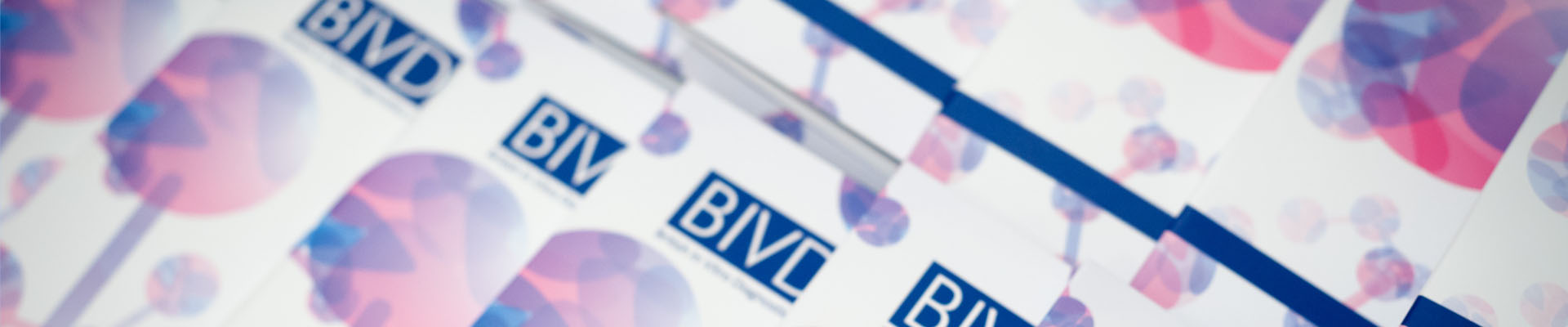 BIVDA Technology Briefs